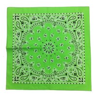 Powderforce BANDANA
